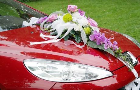 שטיפת רכב בחינם – רשימת תחנות הדלק